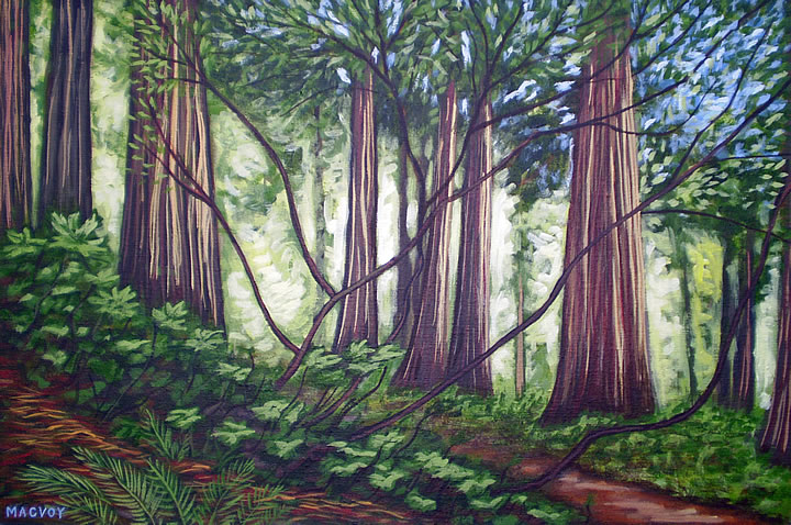 Cedars and Alders by Melanie MacVoy, Acrylic on Canvas
