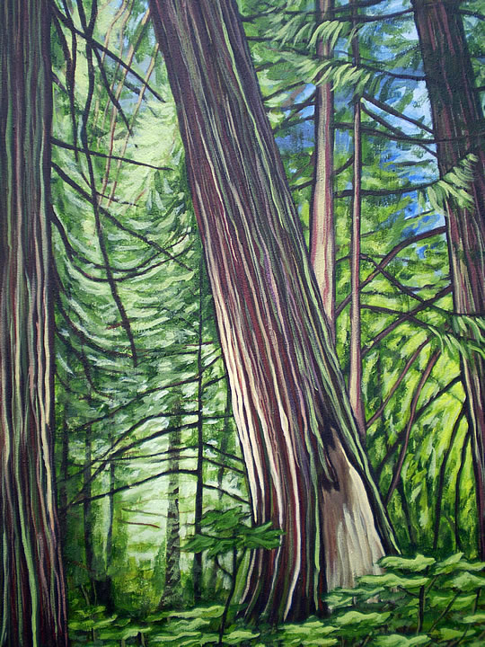Leaning Cedar by Melanie MacVoy, Acrylic on Canvas